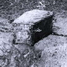 charlie-chaplin-coffin